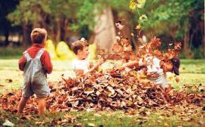 niños-naturaleza